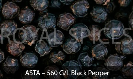 ASTA – 560 G/L Black Pepper